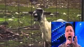 Si ingerii au demonii lor X Factor VS Capra goat version