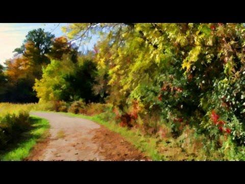 Grand River Lancaster Business Park Trail Autumn Postcard, Kitchener Canada