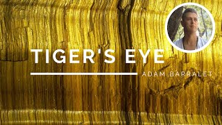 Tiger's Eye - The Crystal of Radiant Success