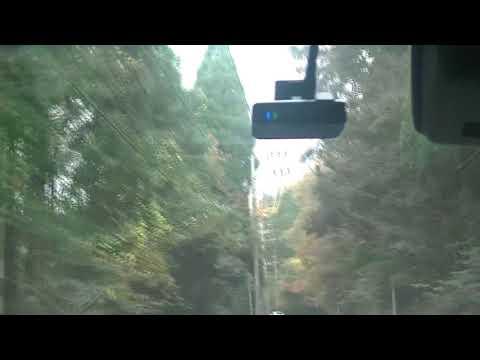 【紅葉真っ盛りの霧島川】【山茶花の道~関平温泉】【牧園特産品販売】