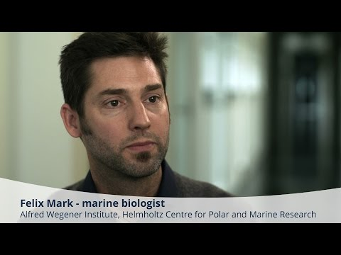 BIOACID Science Portrait: Felix Mark