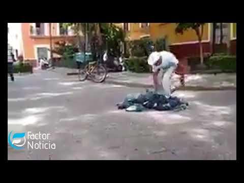 Persona caza palomas en plaza pública con Redes indigna en redes sociales .