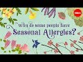 Why do people have seasonal allergies? - Eleanor Nelsen