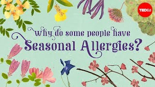 Why Do Some People Have Seasonal Allergies? - Eleanor Nelsen