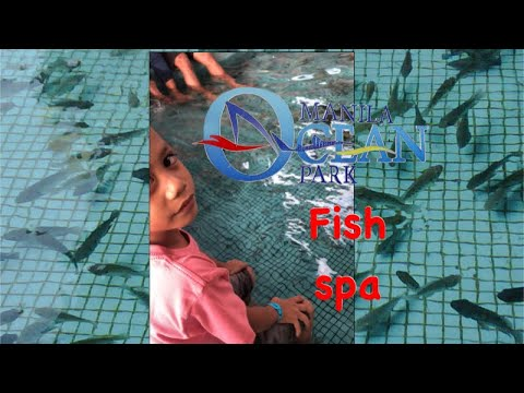 FISH SPA L Manila Ocean Park