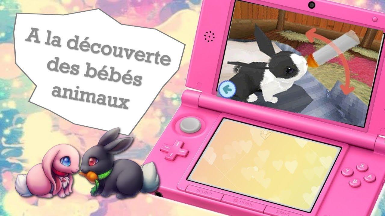 Jeux Ds A La Découverte Des Bébés Animaux Youtube