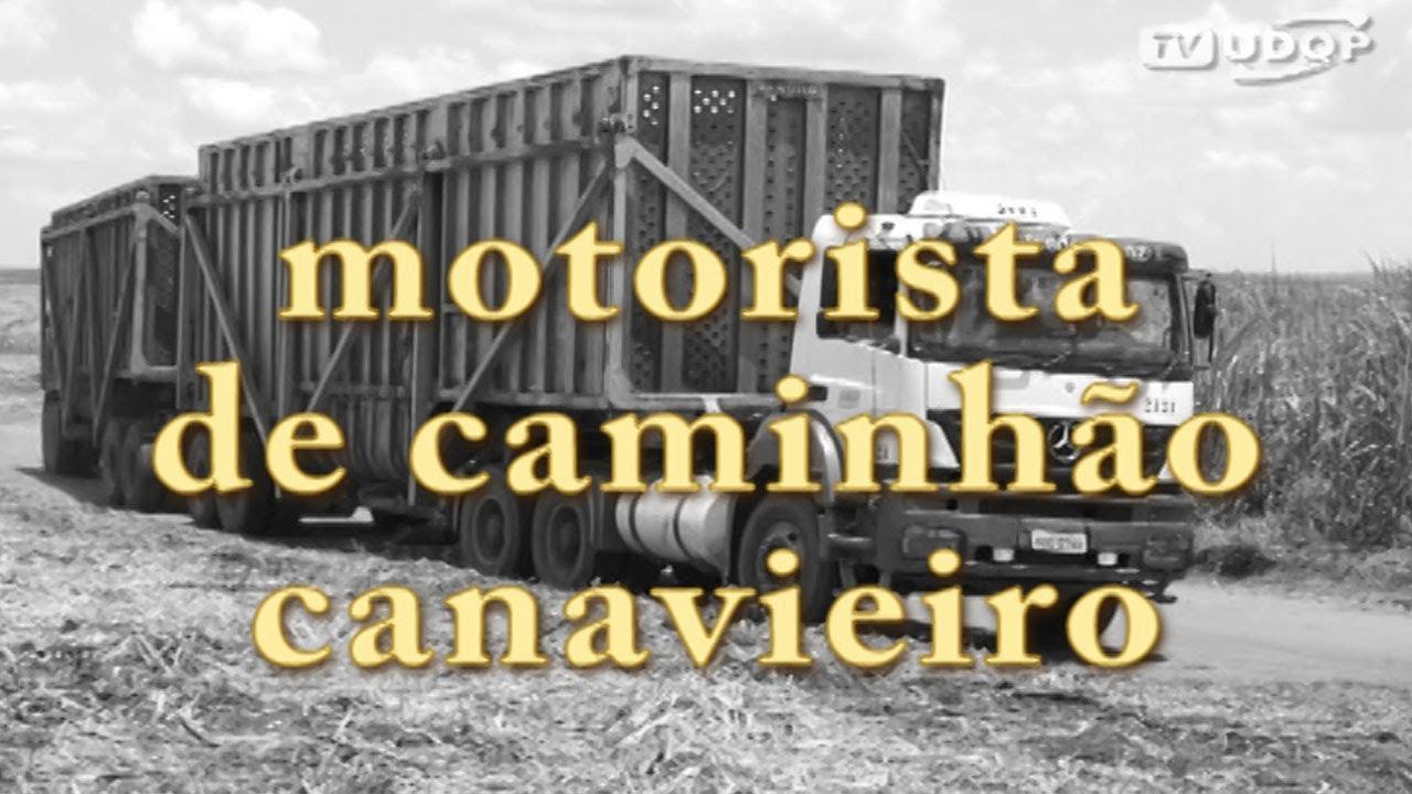 Profissões Motorista De Caminhão Canavieiro