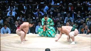 平成28年大相撲九州場所 11月25日 満員御礼 Sumo -Kyushu Basho.