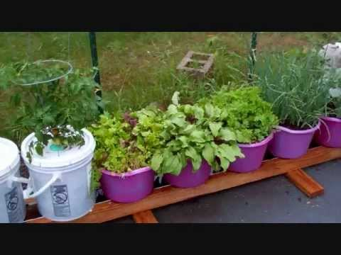 How To Build The Self Watering Rain Gutter Grow System! (101)