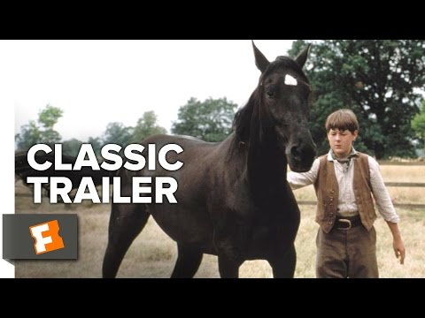 Black Beauty is listed (or ranked) 25 on the list The Greatest Animal Movies