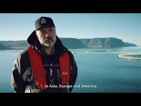 Arnarlax is the largest farmer and producer of quality salmon in Iceland.