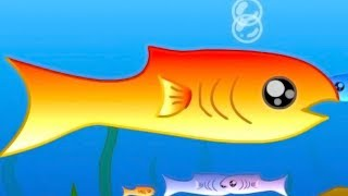 この世の魚を全て食べるとこうなります。