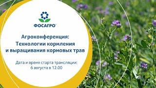 Технологии кормления и выращивания кормовых трав.