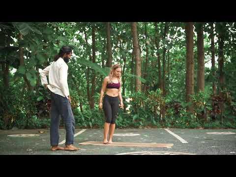 Chamatkarasana - Wild Thing Alignment