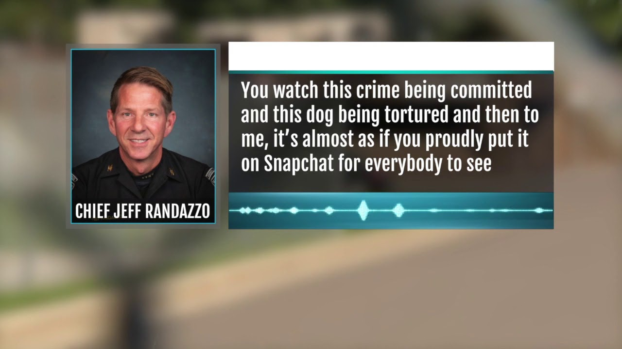 Snapchat video shows dog punched repeatedly by shirtless man in Clinton Township
