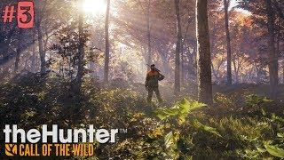 TheHunter: Call of the Wild - №3. ОХОТА НА ЛИСУ