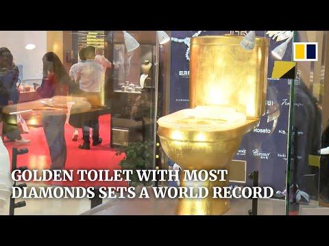 Che ci crediate o no, questa tazza unica nel suo genere è tempestata di oltre 40.000 diamanti! Una toilette da Guinness World Record, realizzata in oro e impreziosita da un sedile in oro bianco e diamanti con 334 carati di pietre preziose.