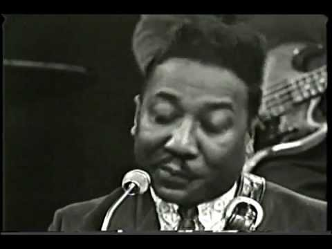 MUDDY WATERS 1966 Got My Mojo Working