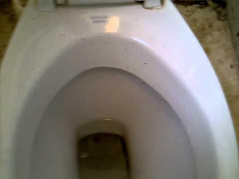 Brighton station toilet