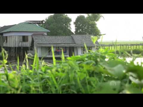 Indonesia Bagus - Kehidupan di Atas Rawa, Paminggir, Kalimantan Selatan