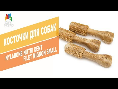 Косточки для собак Nutri Dent | Обзор костей для собак Nylabone Nutri Dent Filet Mignon Small