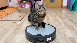 猫の目の前で初めてルンバを起動させるとこうなりますw