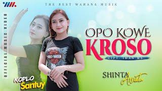 SHINTA ARSINTA - KOPLO SANTUY   OPO KOWE KROSO [Official Music Video] The Best Wahana Musik