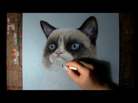 grumpy котик