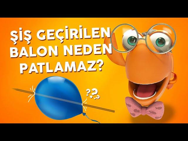 Profesör Balık İle Deneyler: Şişteki Balon