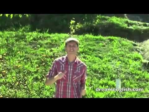 Скачать физкультминутка на уроке английского языка видео
