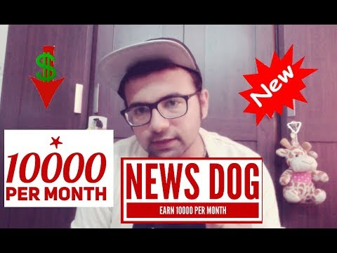 NewsDog , Earn Online ,Earn money by writing news .comment which is best UC NEWS OR NEWSDOG