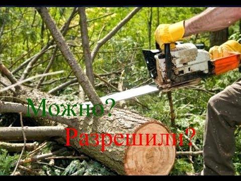 Валежник г.Сухой лог Правила сбора валежника в Свердловской области