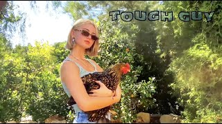 Download Claire Rosinkranz - Tough Guy (Visualizer)