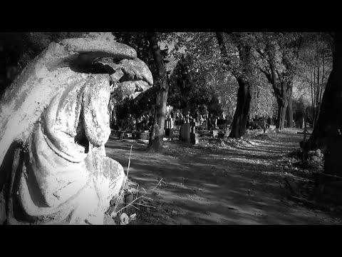 EDVARD GRIEG, 2 Elegiac melodies Op. 34: No.1. Sir Neville Marriner / ASMF