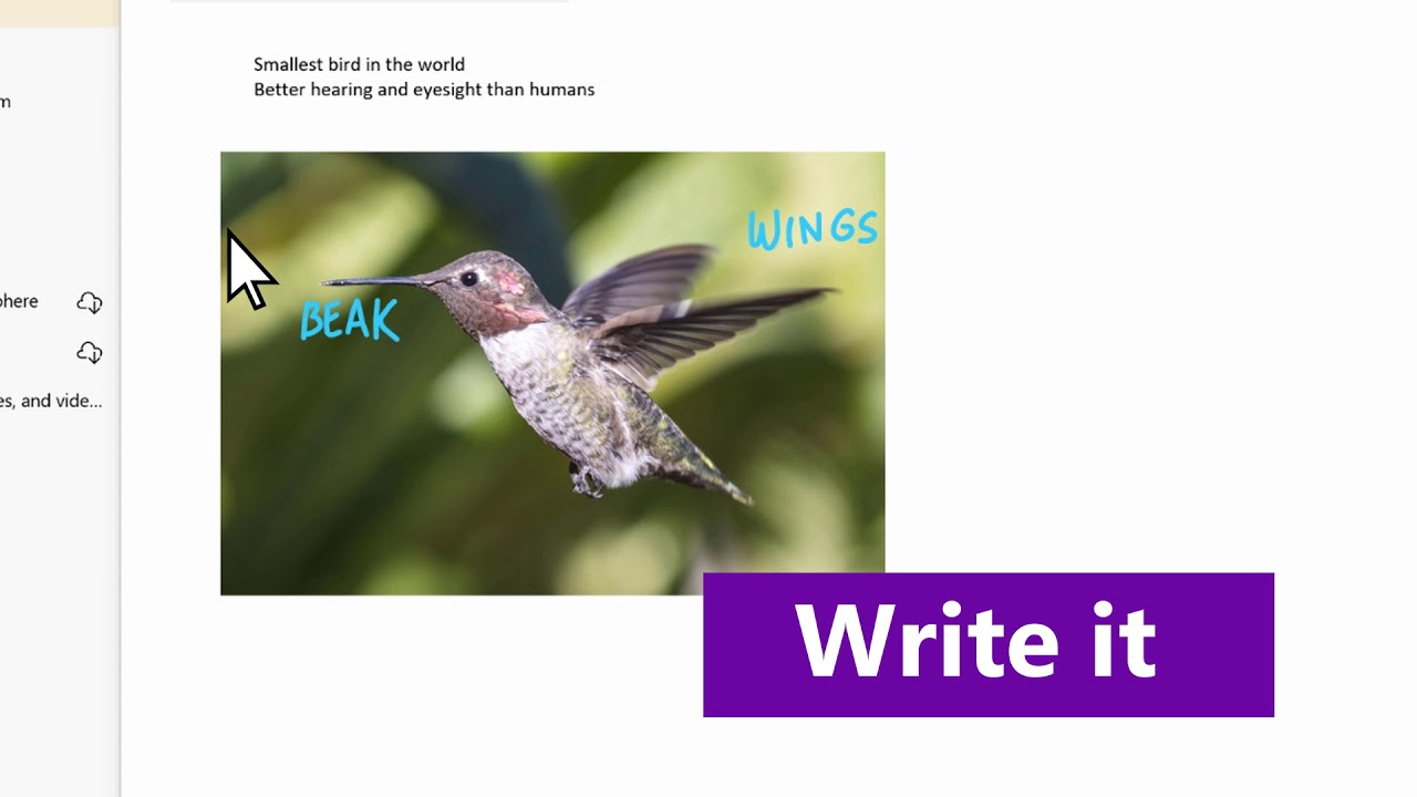 OneNote Tips: Learn how to take notes