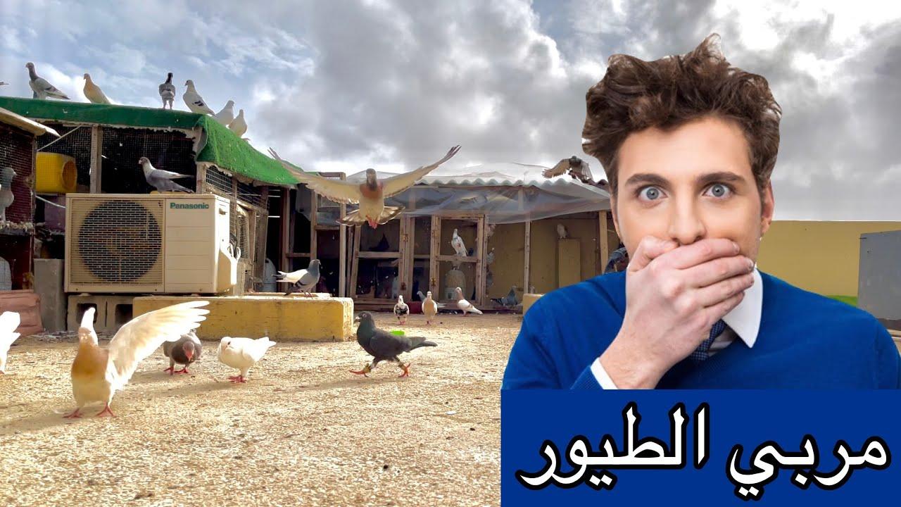 مربي الطيور شخص سيء 😱 !! حكاية تربية الطيور 🔥🕊