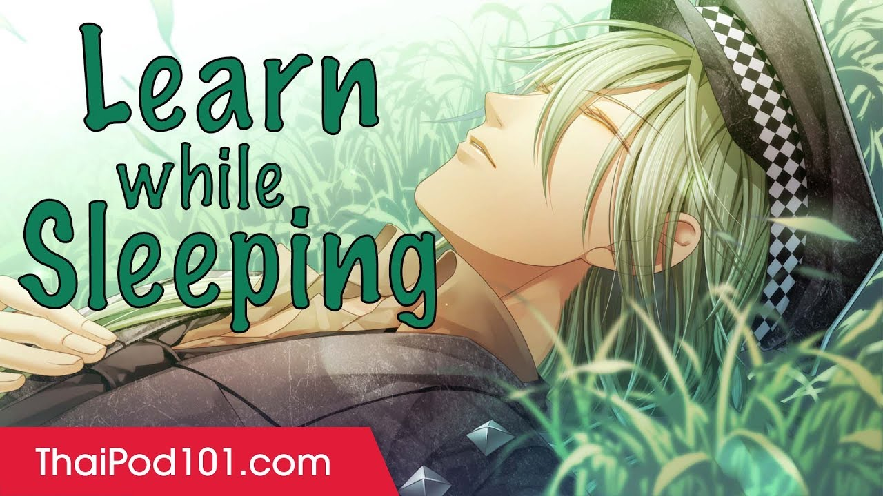 Learn Thai While Sleeping 8 Hours Learn All Basic Phrases Youtube
