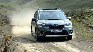 Subaru значит валим! Дубасим на новом Форике