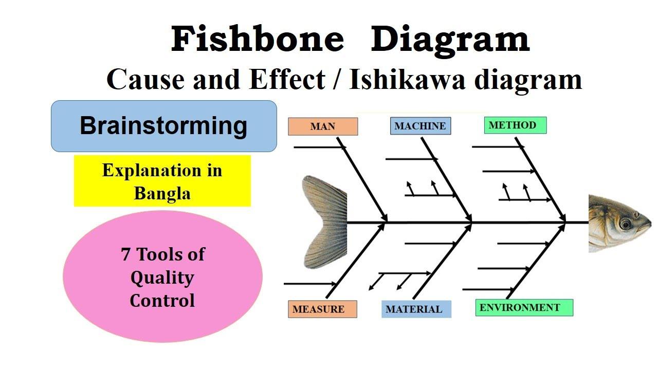 How To Create A Fishbone Diagram In Bangla