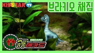 [공룡메카드] 브라키오의 첫 등장과 채집가!