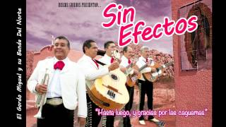 "Sin Efectos — ""No Me Llames Gringo"" (cover of NOFX ""Don"
