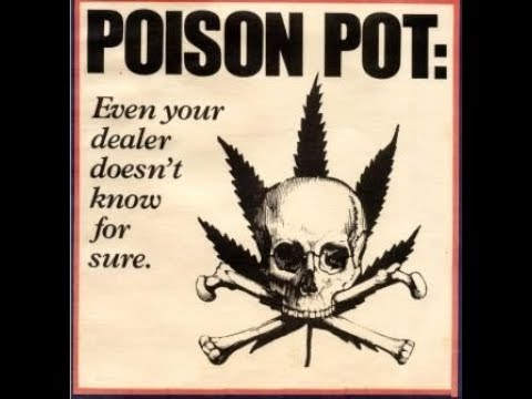 WARNING!!! Your Pot is Most Likely POISONED!!!