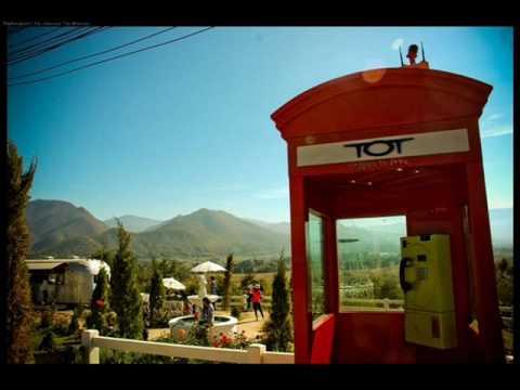 ฟังเพลง - 40 km / hr Terracotta - YouTube