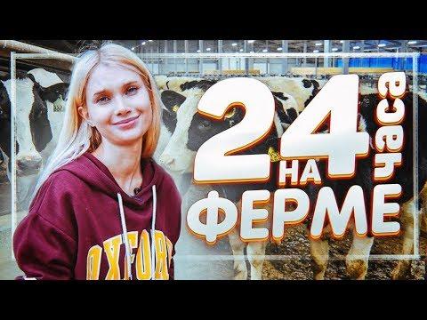 Я пробую жить 24 часа в деревне 🐄 тут надо доить коров | Лисса