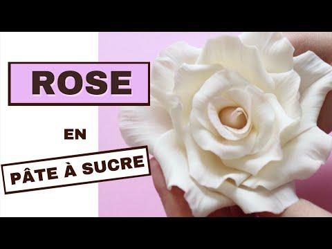 Rose Fluo Petal Dust 4 G pour Décoration Gâteau Gomme Pâte fondant