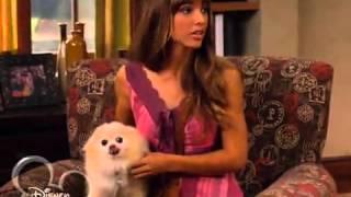 Собака точка ком   1 сезон, 4 7 серия