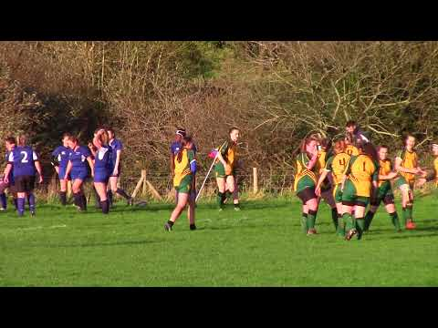 2017-11-01 BUWR v Liverpool Womens 2nds - first half