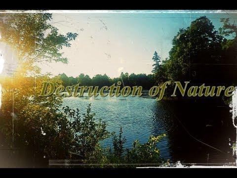 how to stop habitat destruction