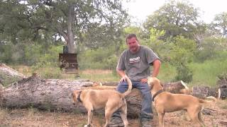 Husqvarna Fun-(lil How2) Making An Easy Campfire Bench