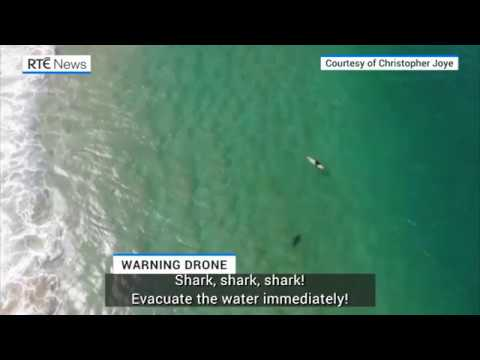 Derek Moore - Drone Operator Warns Surfer Of Nearby Shark!